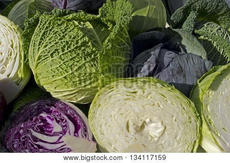 Assortment Of Cabbage
