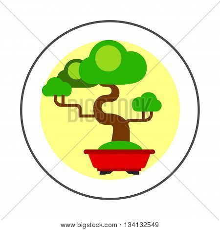 Bonsai tree vector icon. Colored illustration of green bonsai tree in tub