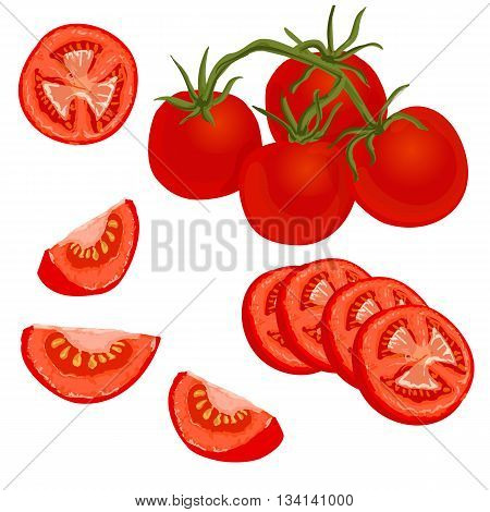 Tomatoes set. Vector illustration of whole and sliced ripe fresh tomatoes on white background isolated