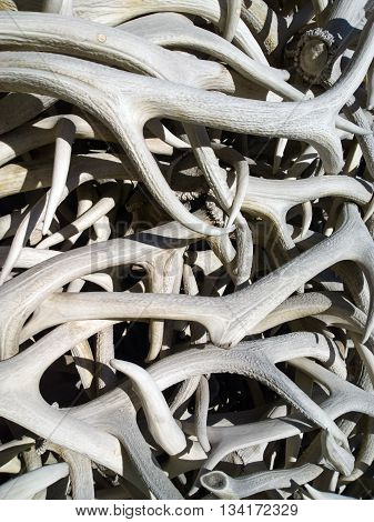 Elk antlers piled up to form an arch in the town square of Jackson Wyoming.