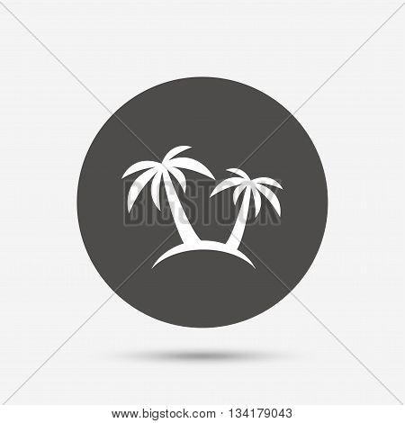 Palm Tree sign icon. Travel trip symbol. Gray circle button with icon. Vector