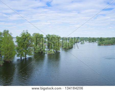 Flood river flow spilled forest trees after big thunderstorm. Nature disasters  catastrophe arainstorm.