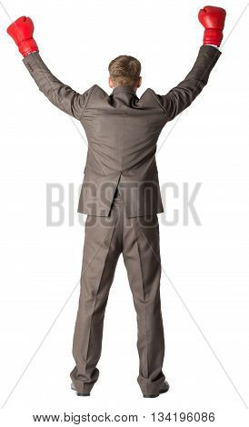 Portrait of a successful businessman. Isolated on white background, rear view