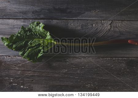Organic pieplant lying on old wooden table