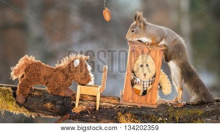 red squirrel is standing at a desk with bear and horse