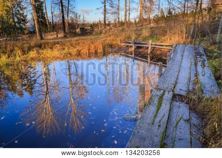 pier and tree reflections in autumn with water