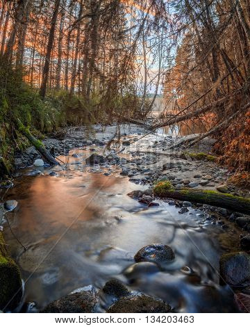 river with rocks and trees in autumn with sundown