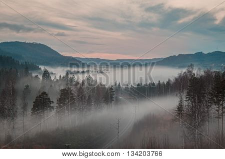 mountain landscape with railway trees in autumn with fog