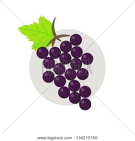 Grapes icon. Grapes icon flat. Grapes icon art. Grapes icon flat illustration. Grapes icon vector. Grapes icon vector image.