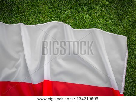 Flags of Poland on green grass