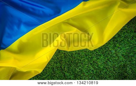 Flags of  Ukraine on green grass