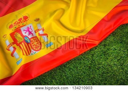 Flags of  Spain on green grass