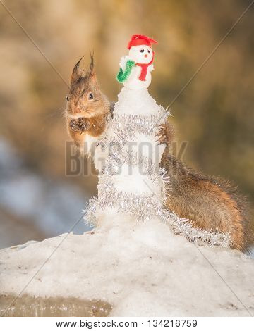 red squirrel embrace a snowman in snow