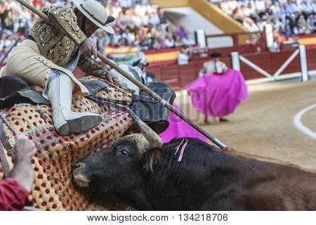 Jaen Spain - October 18 2010: Picador bullfighter lancer whose job it is to weaken bull's neck muscles in the bullring for Jaen Spain