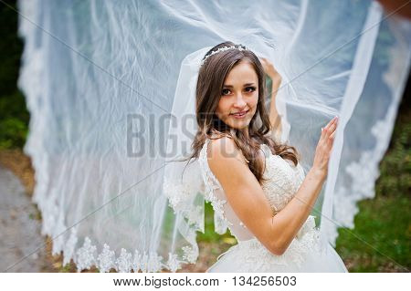 Young Coquettish Brunette Bride Play With Veil