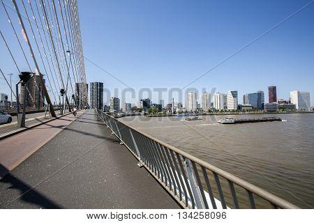 Skyline of Rotterdam seen from the Erasmus bridge