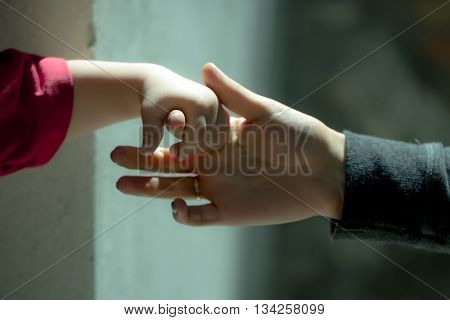 Child holds the hand of an adult. Little boy grabs a finger