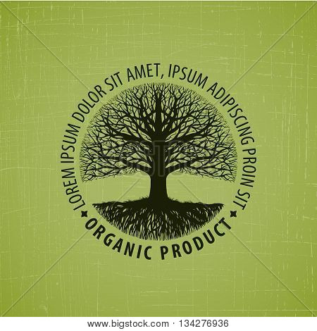 Leafless tree with roots logo. Organic product