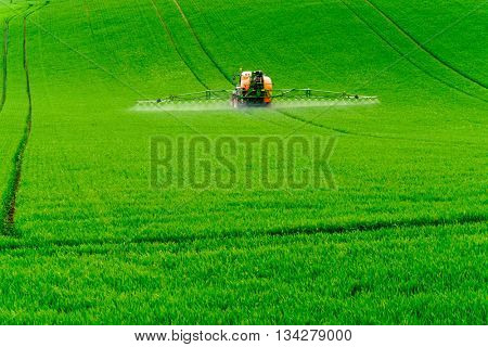 Tractor spraying the chemicals on the green field