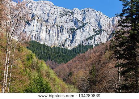 Piatra Craiului Mountains are a mountain range in the Southern Carpathians in Romania.