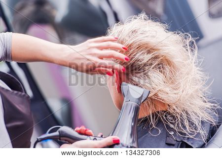 Beauty Studio Hairstylist Business. Hairdresser Drying Clients Hair by Professional Blower Dryer.