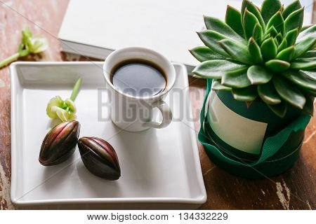 Cup of coffee and cactus on green box background. wooden table.