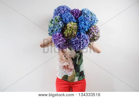 hand holding a bunch blue color hydrangea white background