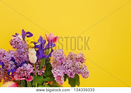 Bouquet of fresh spring flowers on yellow wall background