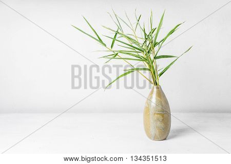 Bamboo leaf in vase on table backround.