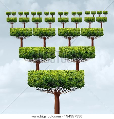 Franchise business concept and expanding business pyramid success tree as a franchising increase or franchisee growth structure symbol in a 3D illustration style.