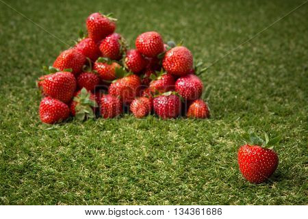 Red strawberries on green grass. Strawberry, fresh strawberry, ripe strawberry, healthy strawberry, strawberry closeup.