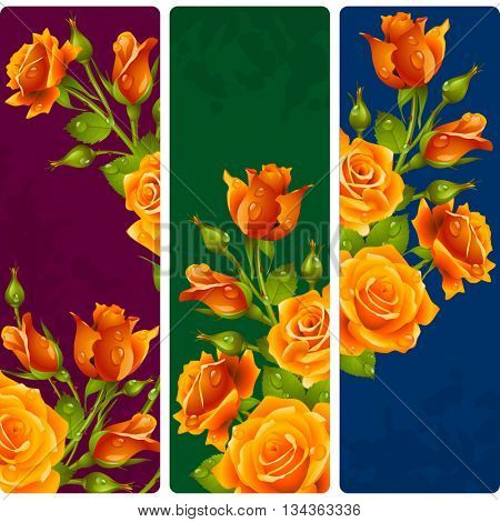 Yellow Rose frames. Vector set of floral vertical banners