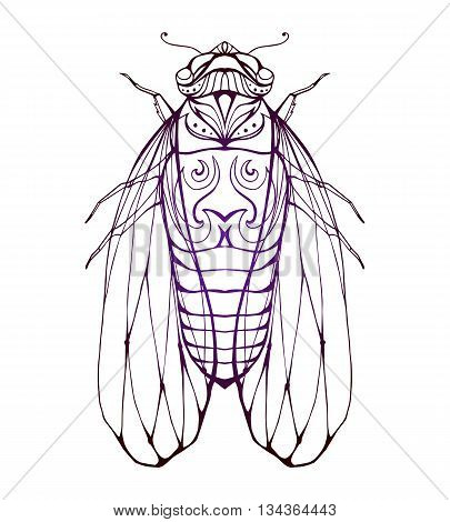 Illustration cicada with boho pattern. Vector element for coloring prints for T-shirts tattoo and a sketch for your creativity