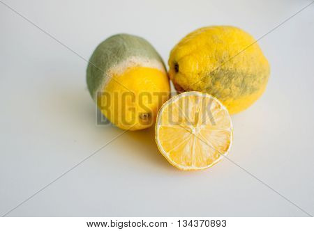 Spoiled, mouldy lemons isolated on white background - concept of food wastage