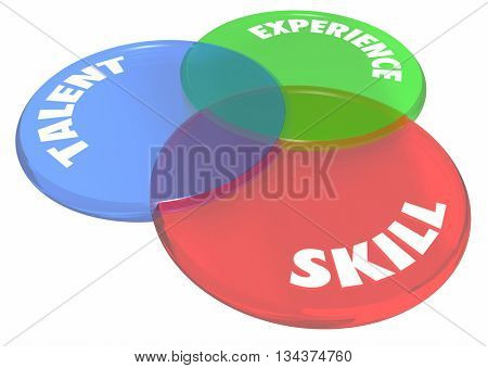 Experience Talent Skill Venn Diagram Circles 3d Illustration