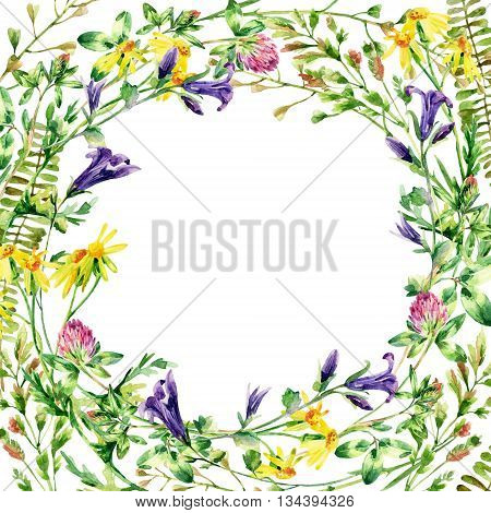 Meadow wildflowers background. Watercolor wild flowers wreath card. Bell flower clover daisy weeds and meadow herbs. Watercolor wild field wreath. Hand painted floral illustration