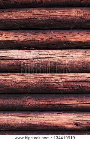 Wooden Logs With A Groove And Hole Structure Made By Insects