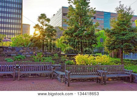 Romantic sunset in the park in Philadelphia Pennsylvania USA. Benches and trees in the park