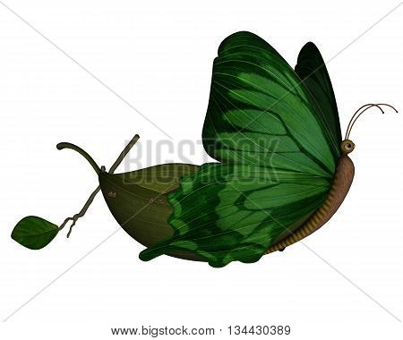 Cute butterfly boat isolated in white background - 3D render