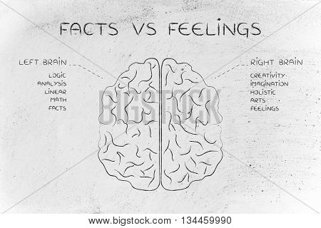 facts vs feelings: flat illustration of a brain with left and right caption and detailed function descriptions poster