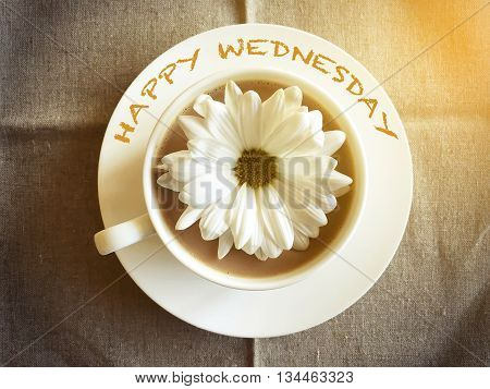 coffee cup on table with white daisy - Happy Wednesday word vintage style