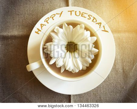 coffee cup on table with white daisy - Happy Tuesday word vintage style