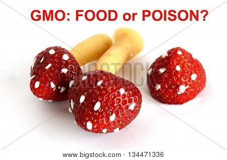 Hypothetical genetically modified food with strawberry and toadstools genes