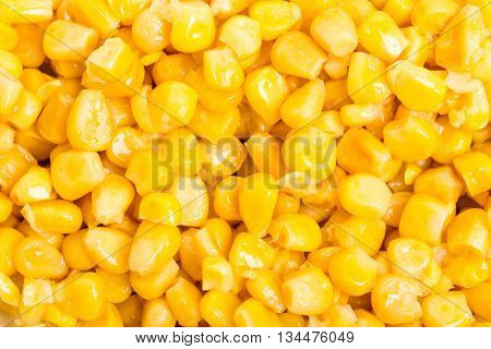 Portion of delicious canned corn closeup. Macro. Phot can be used as a whole background.