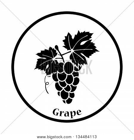 Icon Of Grape