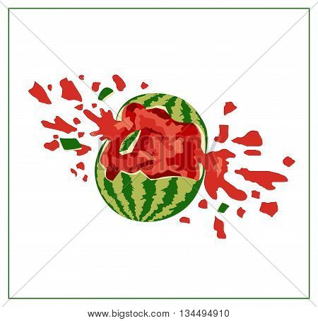 Broken watermelon on white background. Isolated tropical fruit illustration. Green and red ripe watermelon. Vector. Cracked watermelon. Watermelon splash.
