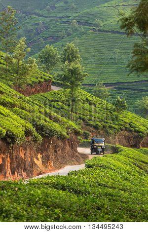 Indian Auto Rickshaw travelling through tea plantation near Munnar, India