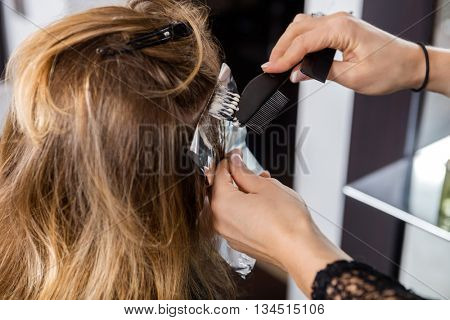 Woman Having Hair Dyed By Beautician At Parlor