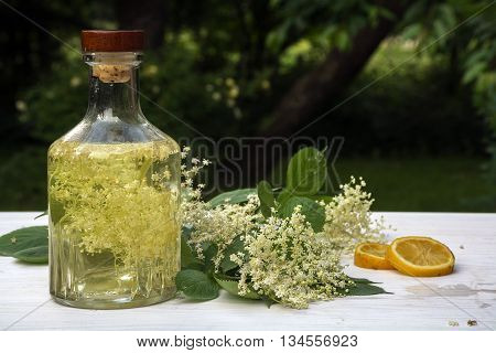 homemade elderflower syrup in a glass bottle elderflower umbel and lemon slices on a white wooden table in the garden refreshing drink in summer selective focus narrow depth of field