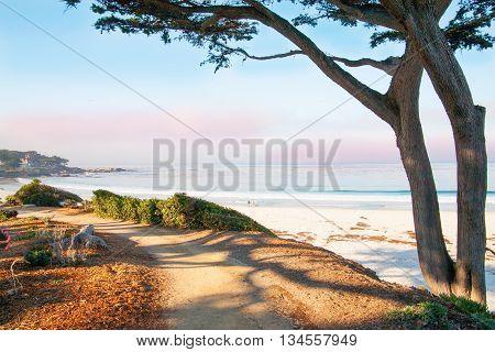 Big Sur, Ca, Usa